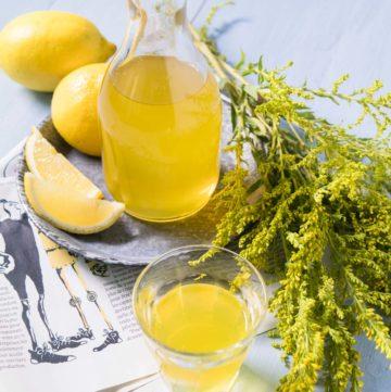 La recette du limoncello